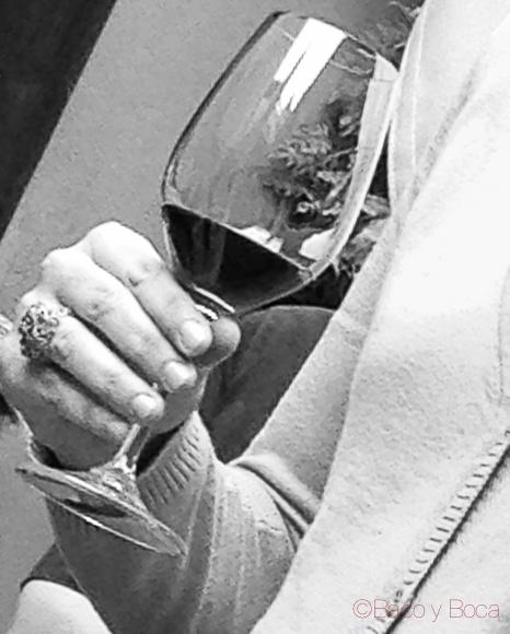 vino-microscopi-2013-bacoyboca