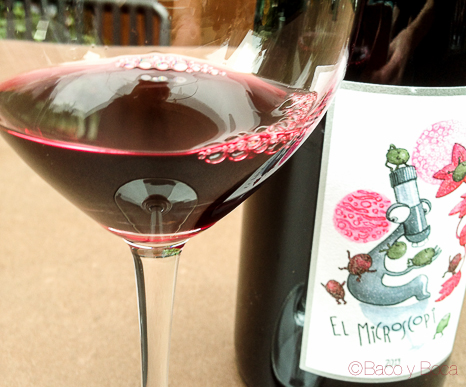 vino-microscopi-2013-bacoyboca-3
